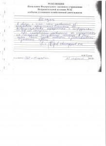Резолюция Святодухова