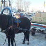 Краудфандинг нам помог. Члены ОНК посетили северные колонии Свердловской области